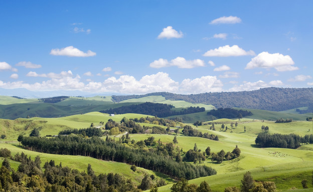 ניו זילנד, טיולים לפי סרטים (צילום: אימג'בנק / Thinkstock)