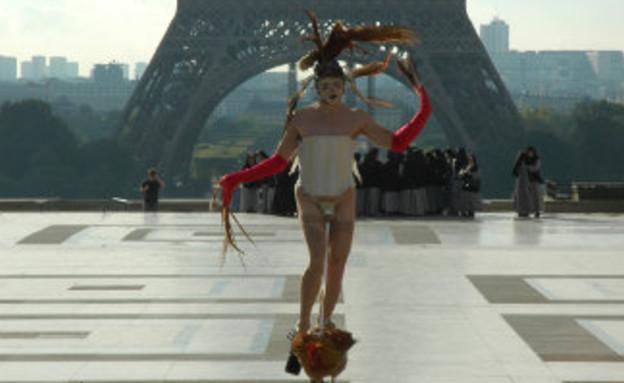 סטיבן כהן (צילום: thelocal.fr)