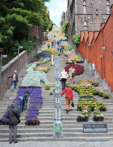 פרחים על המדרגות בבלגיה, מדרגות בעולם, קריט ויקיפדיה יוצר P3tris85