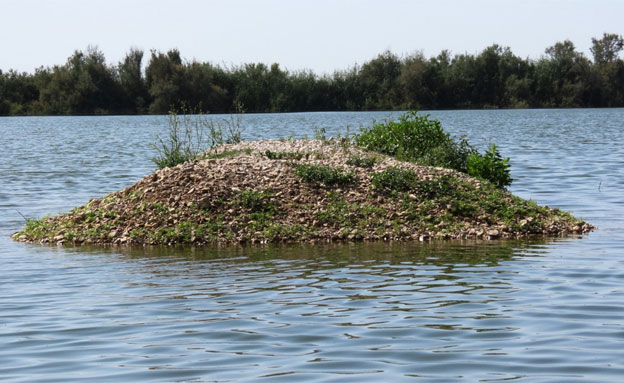 אתרי המים בעמק צרעה (צילום: דב גרינבלט, החברה להגנת הטבע)