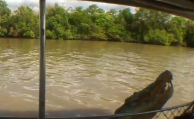 תנין תקף סירה (צילום: צילום מסך מתוך youtube)
