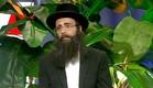 הרב פינטו מייעץ לכל מי שבא בחצרו(mako)
