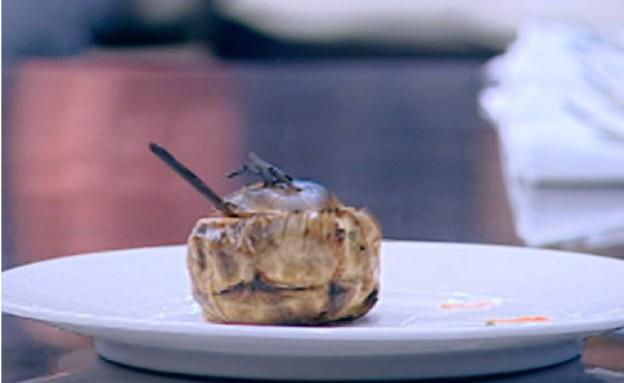סינייה דג של שלמה עזרן(mako)