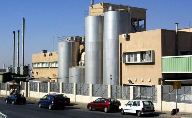 מפעל תנובה (צילום: חדשות 2)