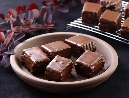 מיני בראוניז מצופים שוקולד קראנצ'י (צילום: אפיק גבאי ,אוכל טוב)