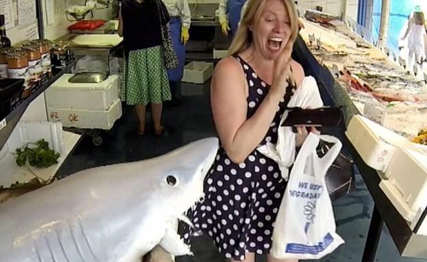 מתיחת כריש (צילום: יוטיוב)