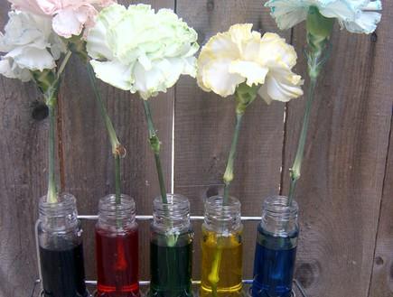 ניסויים מדעיים לילדים בחופש (צילום: babble.com ,צילום מסך)