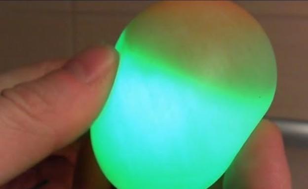 עומדת על ביצים (צילום: יוטיוב)