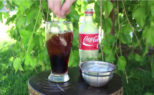 ניסוי קולה (צילום: יוטיוב )