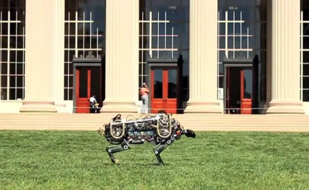 צ'יטה רובוטית (צילום: MIT)