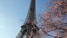 סערת המחירים, גם בפריז (צילום: AP)