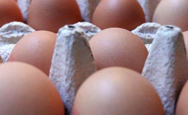 ביצים. יקרות יותר בישראל (צילום: AP)
