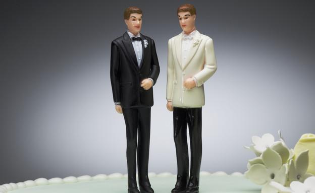 זוג גברים על עוגה מתנשקים (צילום: אימג'בנק / Thinkstock)