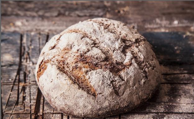 לחם שיפון מלא. מחכים לא עמט אבל זה משתלם (צילום: אפיק גבאי ,לאפות, לבשל, לאהוב)