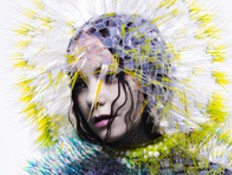 ביורק, עטיפת אלבום, vulnicura (צילום: יחסי ציבור ,יחצ)