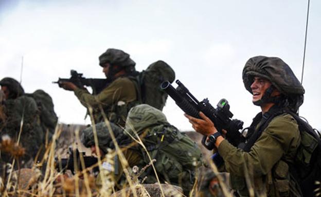 """לוחמים במבצע """"צוק איתן"""" (צילום: דו""""צ)"""