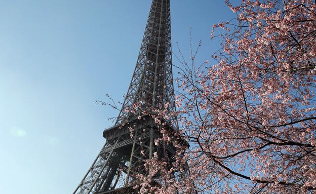 בפריז לא מתרגשים מבגידות (צילום: AP)