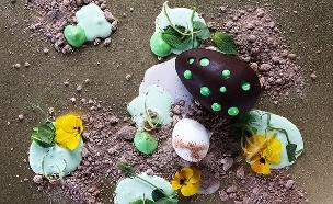 ביצת שוקולד מנטה (צילום: אפיק גבאי ,אוכל טוב)