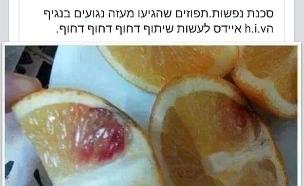 תפוזי איידס (צילום: פייסבוק)