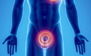 אור כחול שירפא בעיות תפקוד מיני (צילום: geneticliteracyproject.org)
