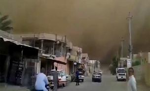צפו: ענן אבק ענק כיסה את העיר פאלוג'ה בעלטה (צילום: רויטרס)