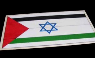כך תיראה ישראל כמדינה דו לאומית