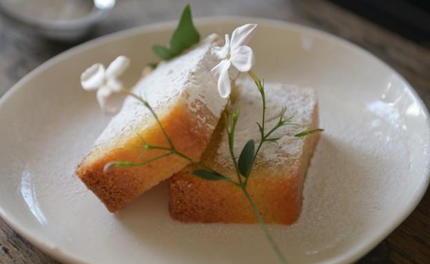 עוגת פולנטה ולימון (צילום: רועי ברקוביץ' ,אוכל טוב)