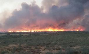 השריפה בגבול ישראל-ירדן, היום