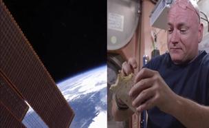 יום בתחנת החלל (צילום: רויטרס)