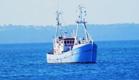 המשט בדרך: אוהד חמו בדיווח מיוחד מלב ים