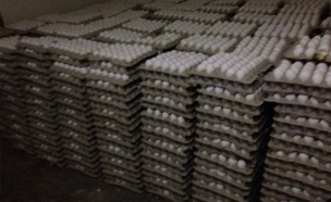 """הביצים שהוברחו (צילום: דוברות מחוז ש""""י)"""