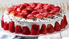מתכוני עוגות ועוגיות