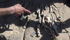 שן בת 560 אלף שנה. ארכיון (צילום: חדשות 2)