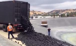 96 מיליון כדורים (צילום: יוטיוב )