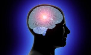 מוח מואר (צילום: istockphoto ,istockphoto)