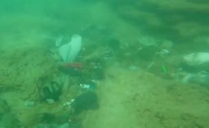 תיעוד: ערימת ניילונים במעמקי הים (צילום: משה קוסטי)