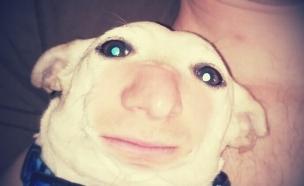 חילופי פרצופים (צילום:  imgur)