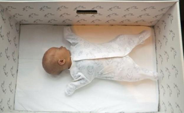 תינוקות בקופסת קרטון