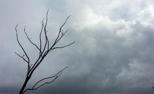 מזג אוויר הפכפך (צילום: אלעד זוהר, חדשות 2)
