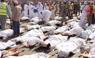 האסון בסעודיה, מאות נמחצו (צילום: משרד ההגנה הסעודי)