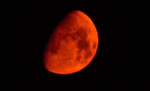 אל תפספסו: הלילה - ליקוי ירח נדיר (צילום: רויטרס)