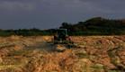 שדה חקלאי ליד הוד השרון (צילום: דיויד סילברמן ,getty images)