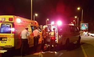 פיגוע דריסה ודקירה בכביש 65 בואדי ערה (צילום: אסף בודניגר, יח' תיעוד מדא)
