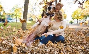 כלב נדחף לפריים (צילום: dailymail ,mako)