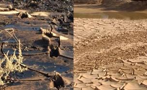 שנה לאסון דליפת הנפט בעברונה (צילום: חדשות 2)