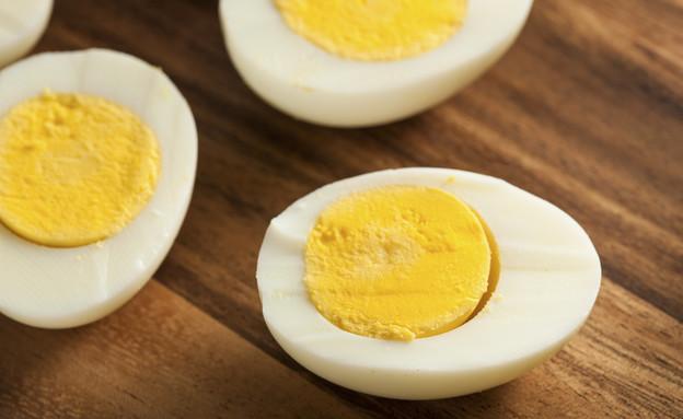 ביצה קשה (צילום: thinkstock ,thinkstock)
