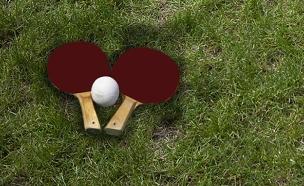 המתכון למיליון: פינג פונג בדשא? (צילום: רויטרס)
