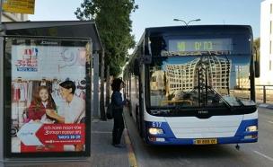 המדריך המלא: מתי הכי עמוס באוטובוס? (צילום: חדשות 2)