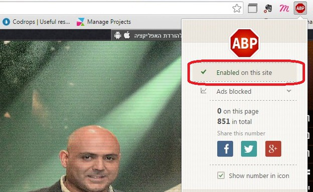 [Image: chrome_adblock_plus1_i.jpg]