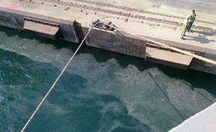 הזיהום שנוצר בנמל (צילום: דרור אריאלי,  המשרד להגנת הסביבה)